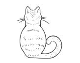 Disegno di Cat indietro da colorare