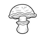 Disegno di Champignon portobello da colorare