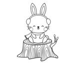 Disegno di Coniglio selvatico riparato da colorare