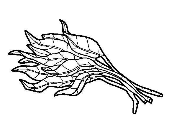 Disegno di Mazzo di spinaci da Colorare