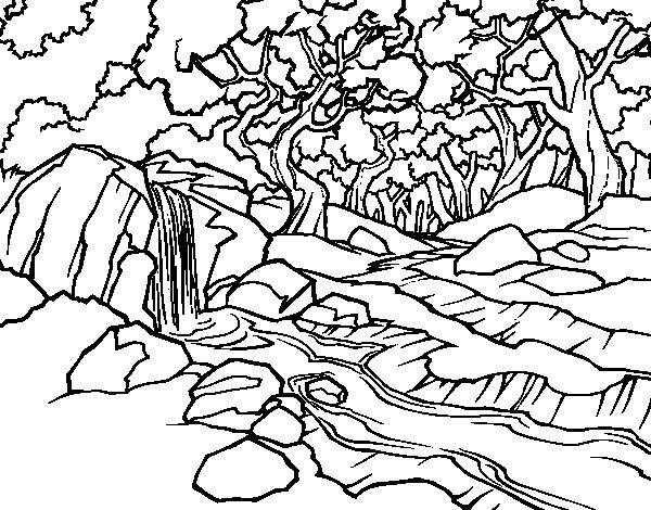Disegno di Paesaggio della foresta con un fiume da ...