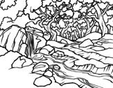 Disegno di Paesaggio della foresta con un fiume da colorare