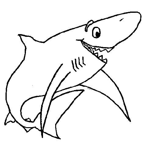Disegno di squalo allegro da colorare for Disegno squalo