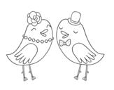Disegno di Uccelli nuziali da colorare