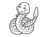 Disegno di Un serpente a sonaglio da colorare