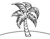Disegno di Una palme da colorare