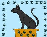 Disegno Gatto egiziano II pitturato su marco04