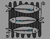 Disegno Pesce pitturato su tami