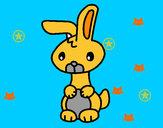 Disegno Art il coniglio  pitturato su vilu2006