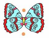 Farfalla 1a