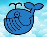 Balena bebè