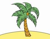 Una palme