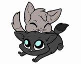 Due gattini
