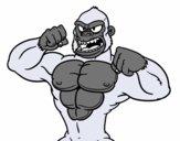 Gorilla forte