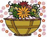 Paniere di fiori 11