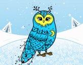 Civetta di inverno