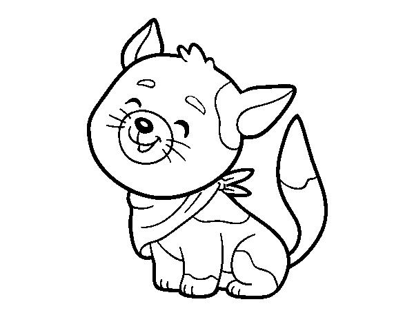 Disegno Di Gatto Con La Bandana Da Colorare Acolorecom