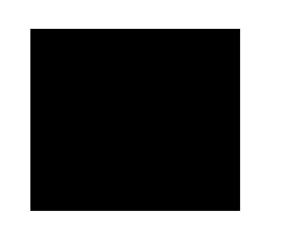 Disegno Di Leone Adulti Da Colorare Acolore Com